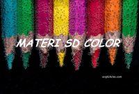 Belajar Cerdas Tentang Warna dalam Bahasa Inggris
